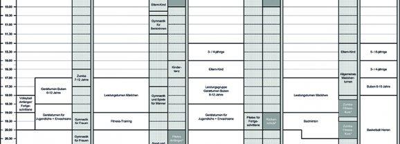 Ausfall von Trainingsstunden und Hallenplan-Änderungen ab 14. Juni 2018