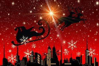 Am 24. November kommt der Nikolaus…
